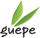 Guepe